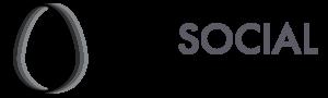 logo The social incubator